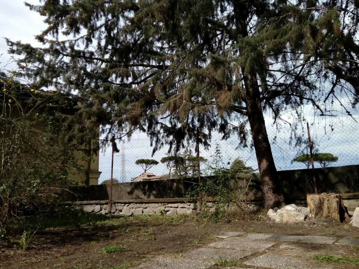 Route_pasqua_2018_Fiumicino__ (71)