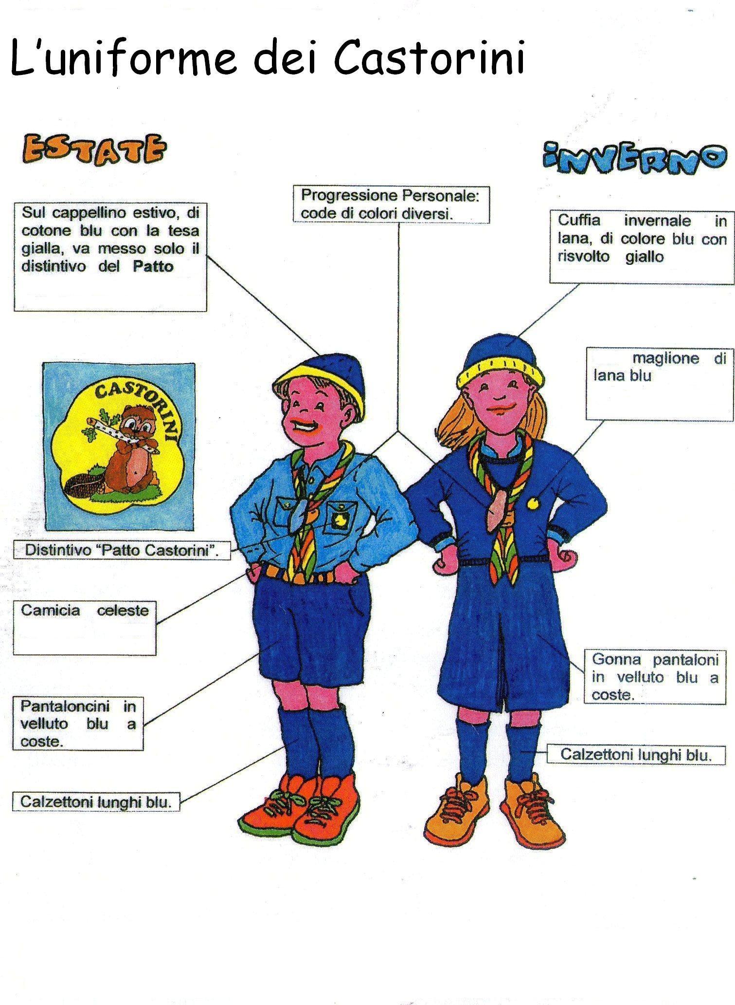 castorini_uniforme